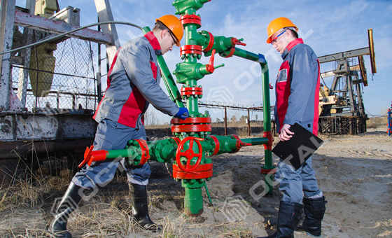 Wellhead Christmas Tree Oil Gas Wellhead Manufacturer In China